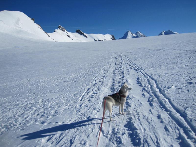 Saskia est montée à 4159m d'altitude! 1012
