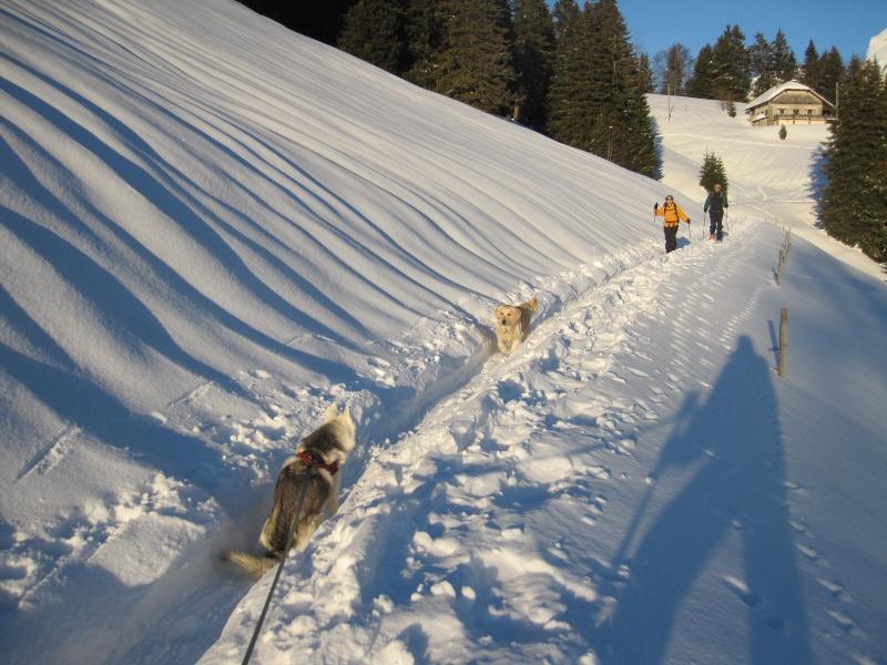 Saskia dans la neige en décembre 2011 1021