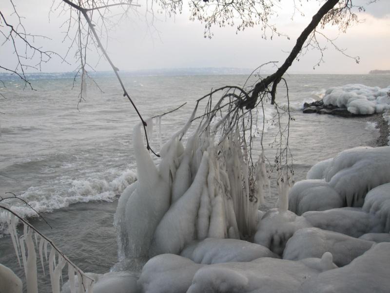Tempête glacée au bord du lac Léman 1034