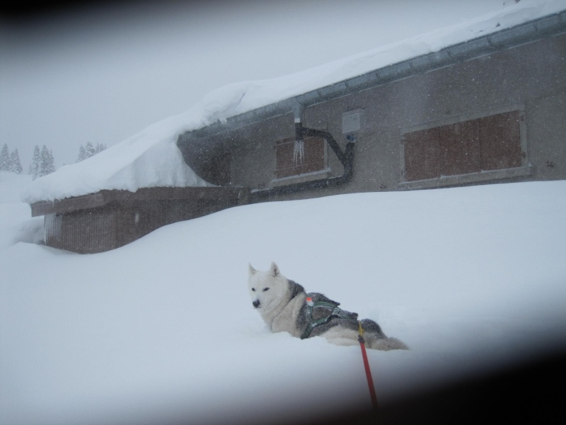 Nouvelles courses de Saskia dans la neige 1038