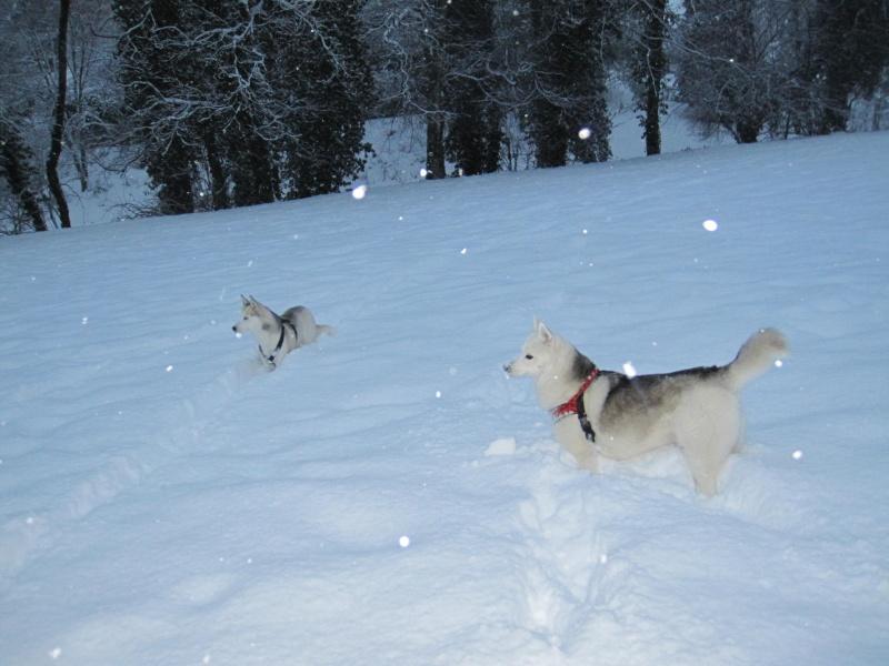 Nouvelles courses de Saskia dans la neige 1040