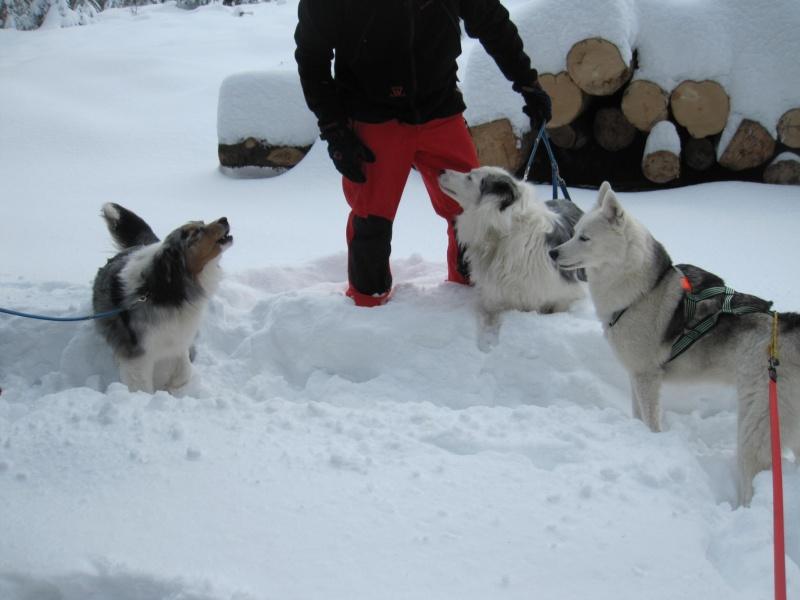 Nouvelles courses de Saskia dans la neige 1042
