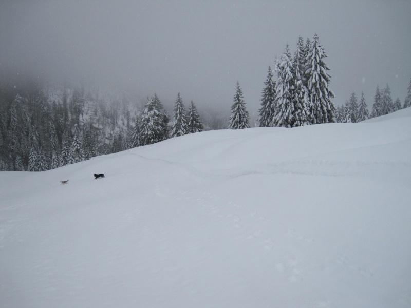 Nouvelles courses de Saskia dans la neige 1043