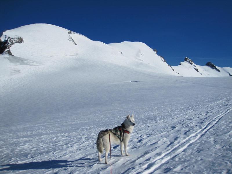 Saskia est montée à 4159m d'altitude! 1111