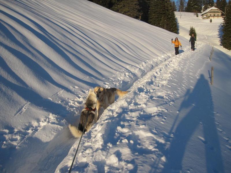 Saskia dans la neige en décembre 2011 1119