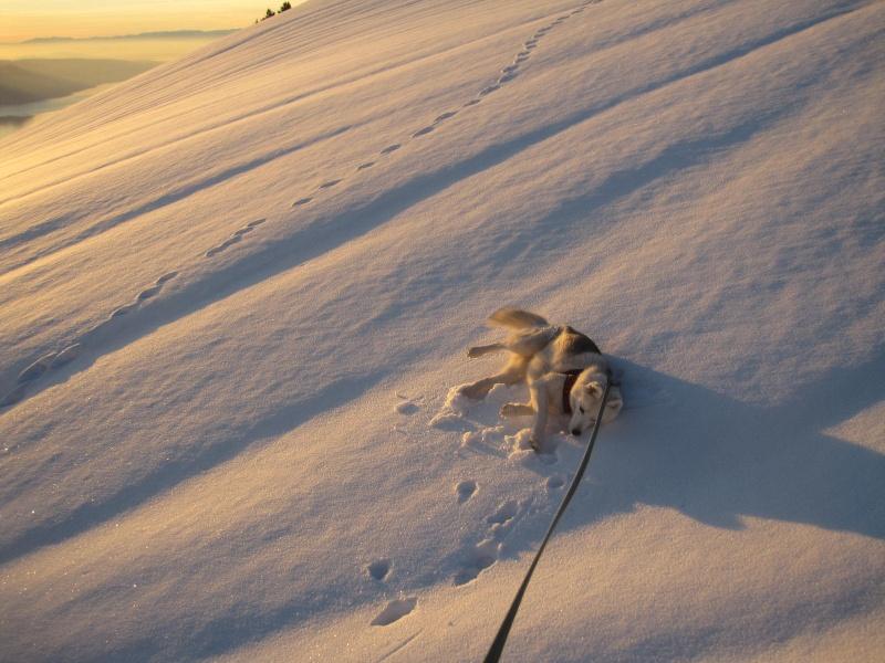 Saskia dans la neige en décembre 2011 1120