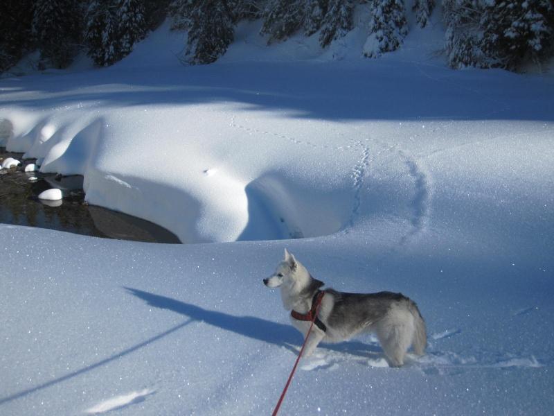 Saskia dans la neige à Morgins 1122