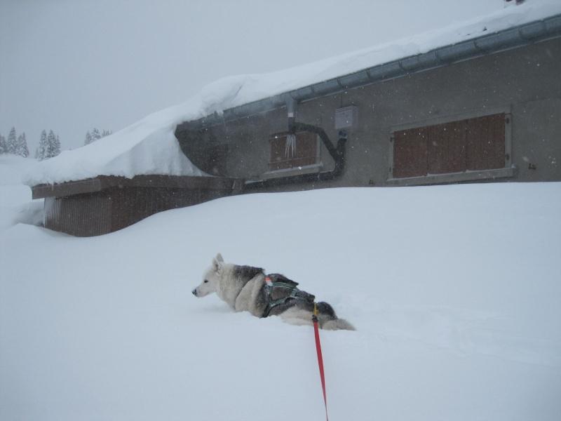 Nouvelles courses de Saskia dans la neige 1135