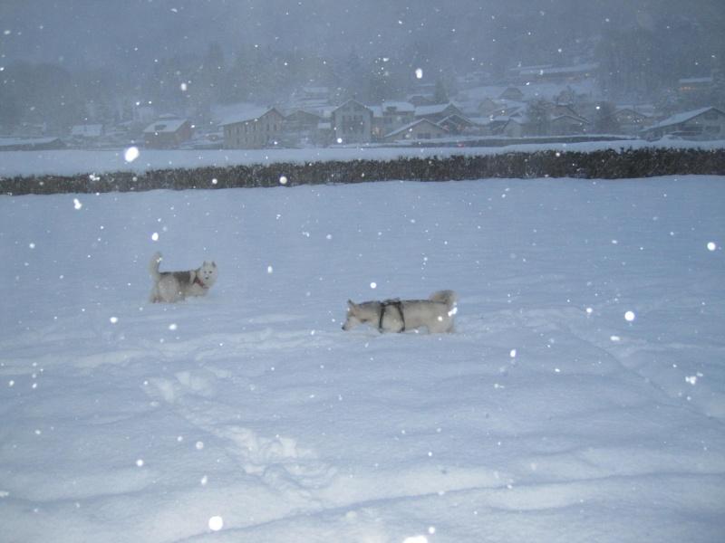 Nouvelles courses de Saskia dans la neige 1137