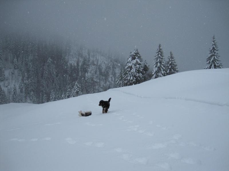Nouvelles courses de Saskia dans la neige 1140