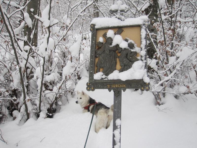 Saskia dans la neige en décembre 2011 121