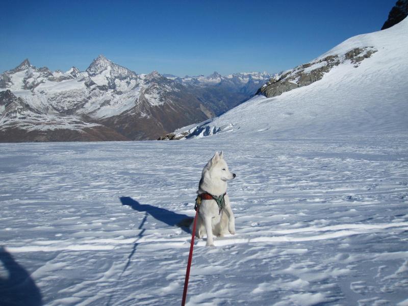 Saskia est montée à 4159m d'altitude! 1212