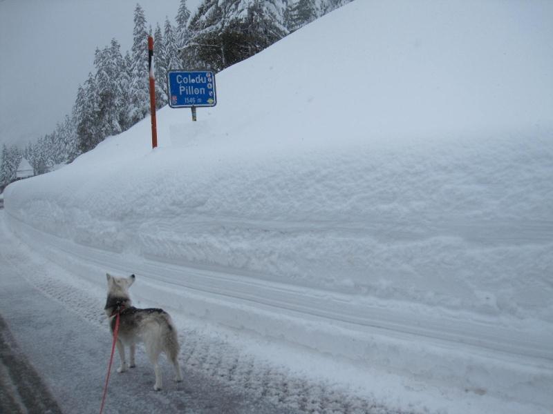 Saskia dans la neige en décembre 2011 122