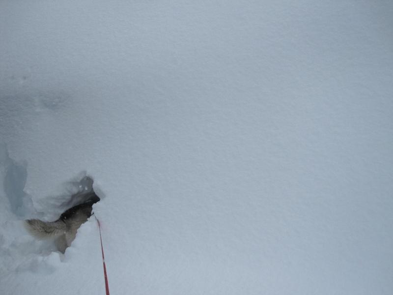 Saskia dans la neige en décembre 2011 1220
