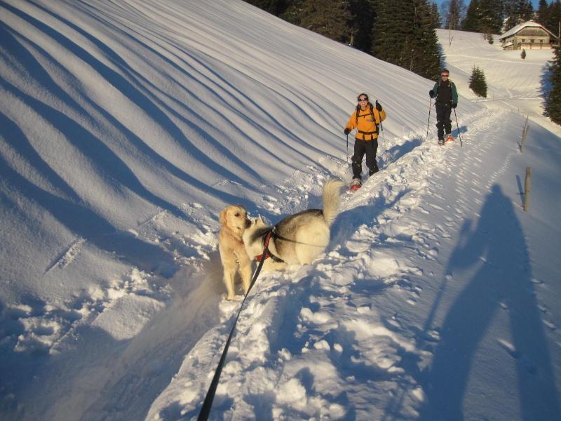 Saskia dans la neige en décembre 2011 1221