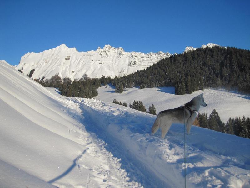 Saskia dans la neige en décembre 2011 123
