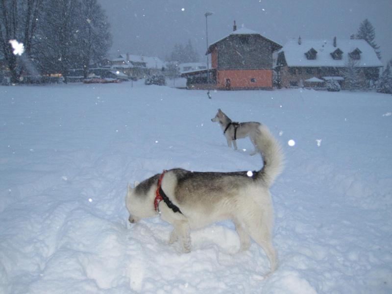 Nouvelles courses de Saskia dans la neige 1237