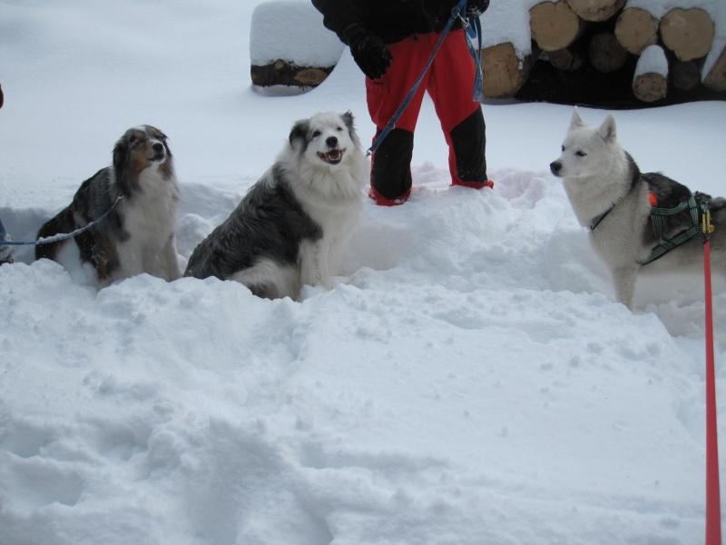 Nouvelles courses de Saskia dans la neige 1239