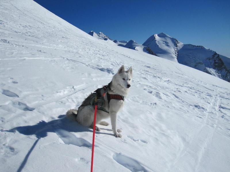 Saskia est montée à 4159m d'altitude! 1311
