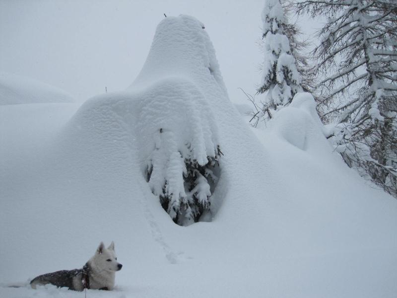Saskia dans la neige en décembre 2011 1318