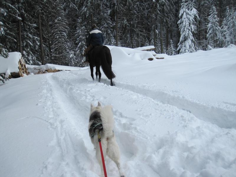 Nouvelles courses de Saskia dans la neige 1335