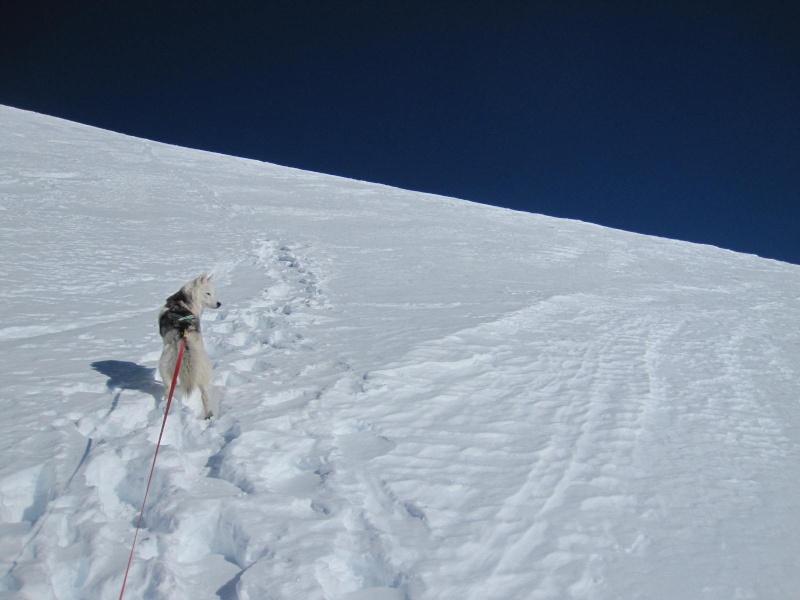 Saskia est montée à 4159m d'altitude! 1411