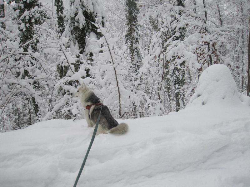 Saskia dans la neige en décembre 2011 1416