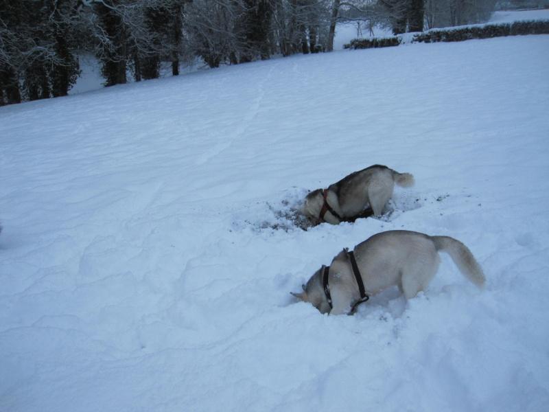 Nouvelles courses de Saskia dans la neige 145