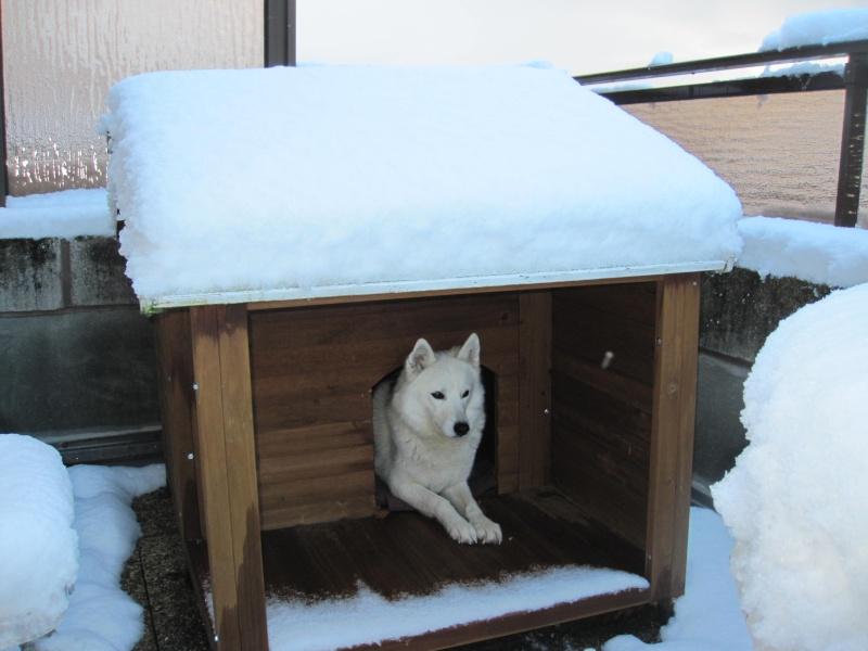 Nouvelles courses de Saskia dans la neige 146