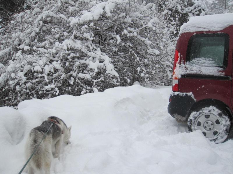 Saskia dans la neige en décembre 2011 1515