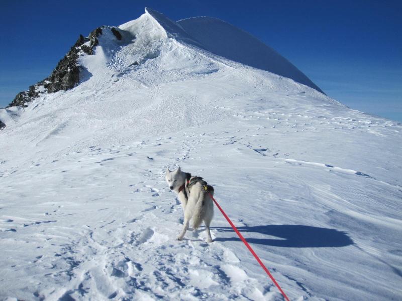 Saskia est montée à 4159m d'altitude! 1610