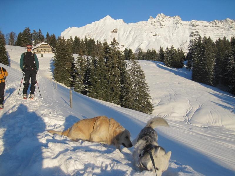 Saskia dans la neige en décembre 2011 1615