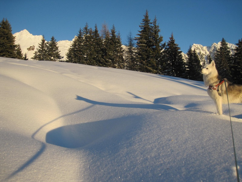 Saskia dans la neige en décembre 2011 1816