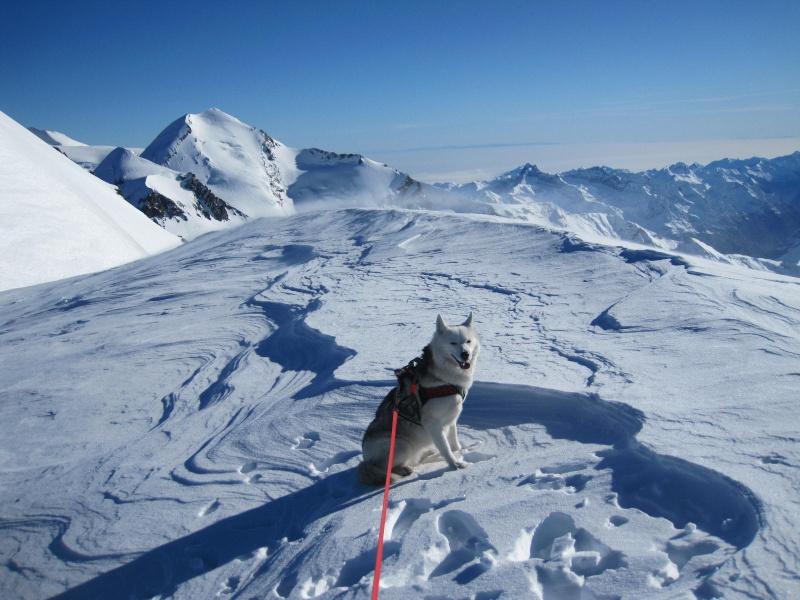 Saskia est montée à 4159m d'altitude! 1910