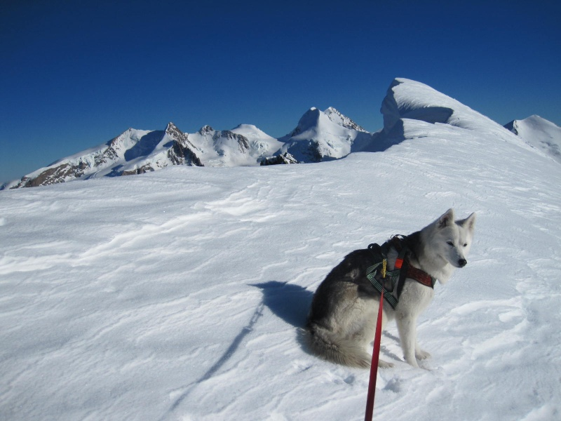 Saskia est montée à 4159m d'altitude! 2011