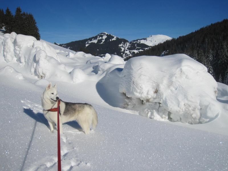 Saskia dans la neige à Morgins 2017
