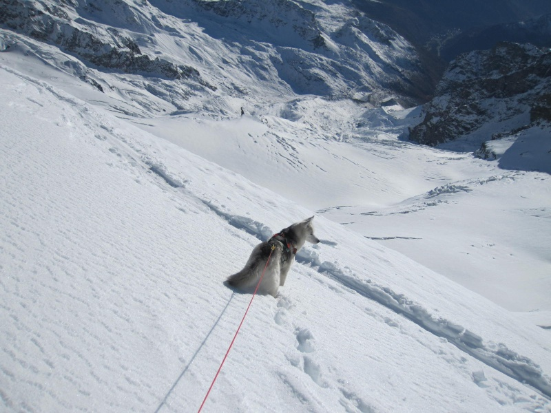 Saskia est montée à 4159m d'altitude! 2112