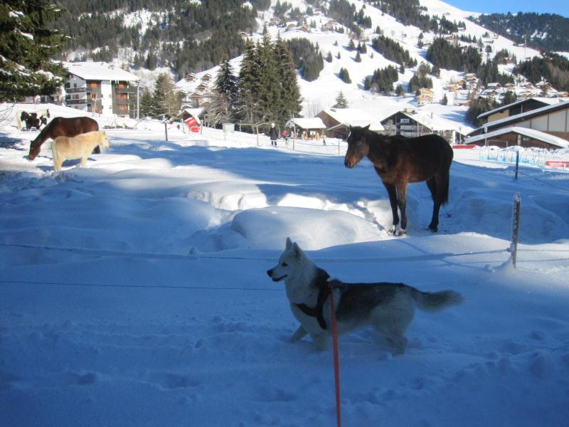 Saskia dans la neige à Morgins 2117