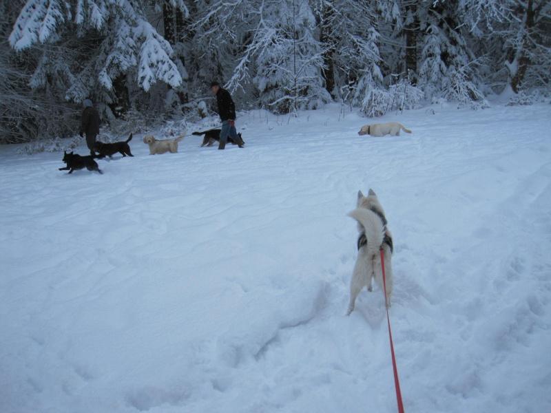 Nouvelles courses de Saskia dans la neige 2124