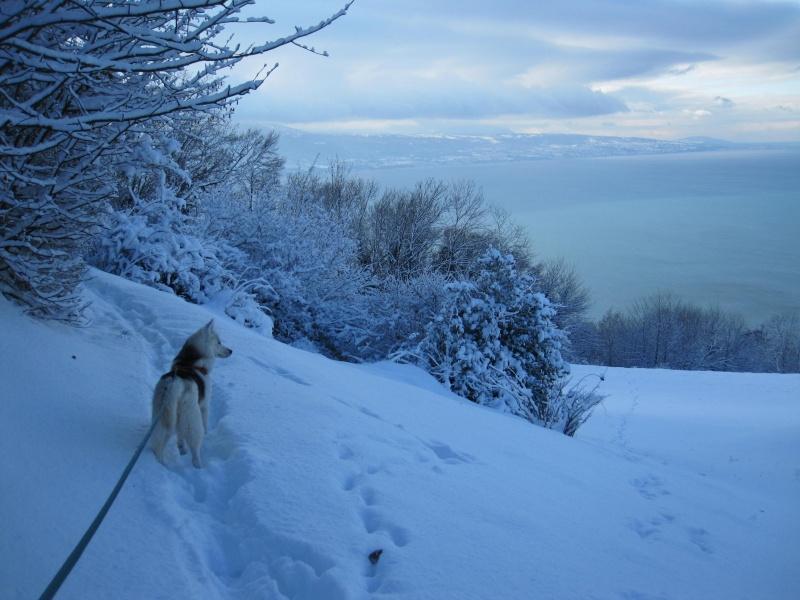 Nouvelles courses de Saskia dans la neige 2125