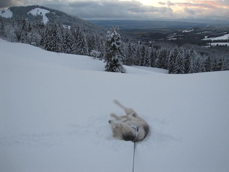 Enfin de la neige !  217