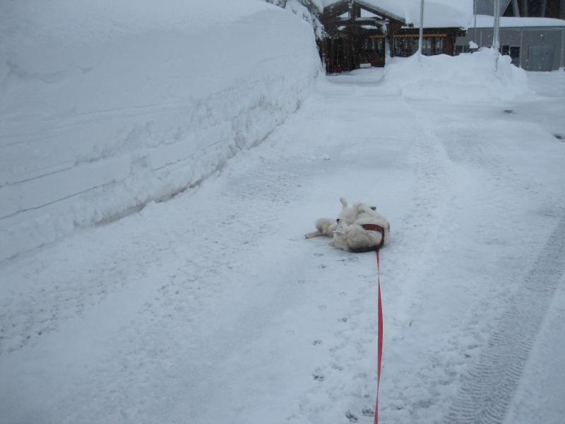 Saskia dans la neige en décembre 2011 221