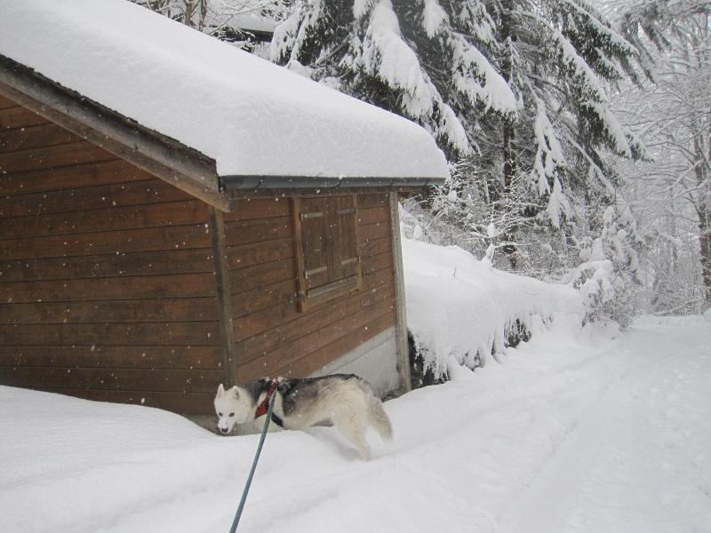 Saskia dans la neige en décembre 2011 2214