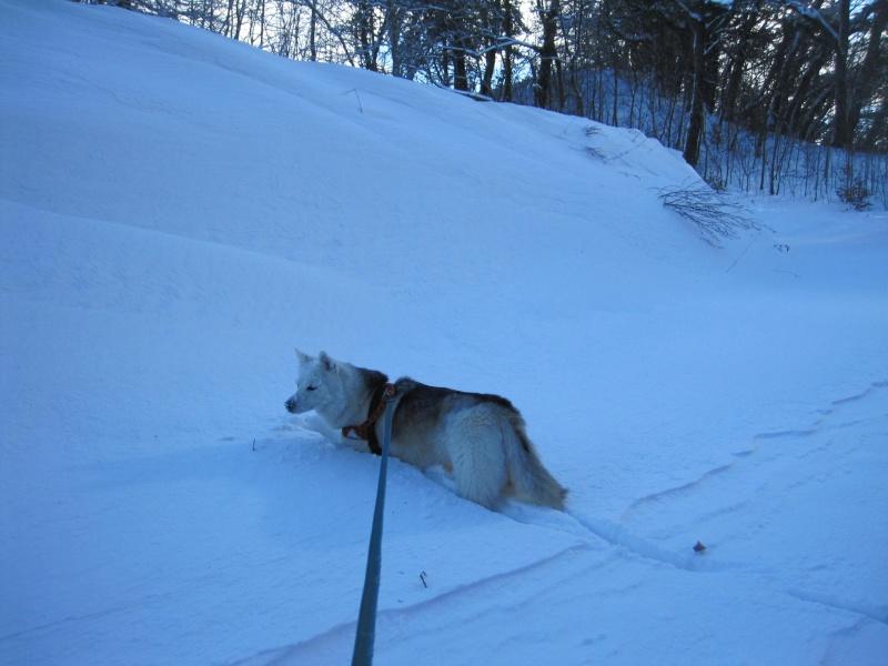 Nouvelles courses de Saskia dans la neige 2223