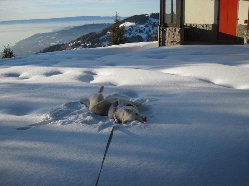 Saskia dans la neige en décembre 2011 223