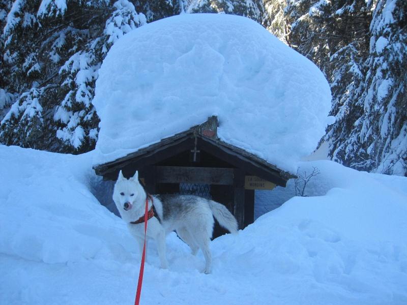 Saskia dans la neige à Morgins 227