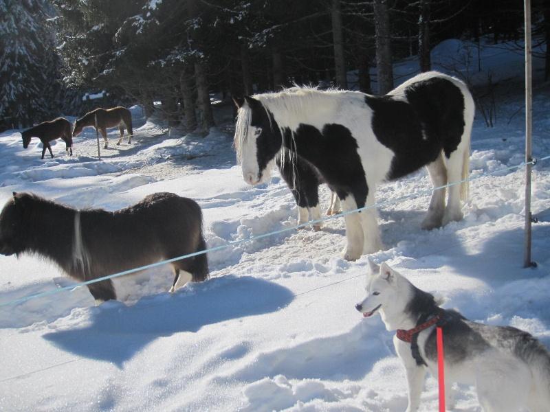 Saskia dans la neige à Morgins 2314