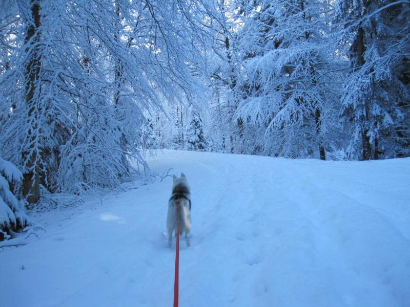 Nouvelles courses de Saskia dans la neige 2418