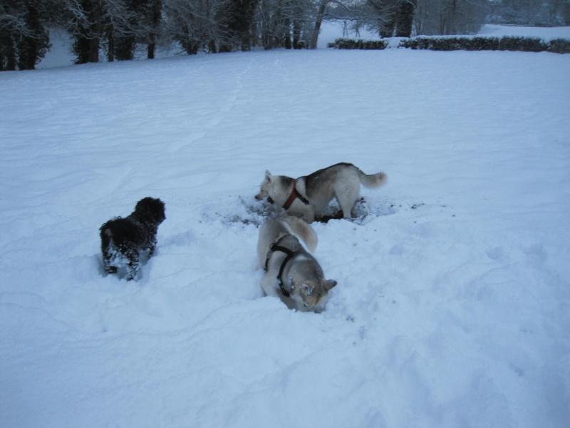 Nouvelles courses de Saskia dans la neige 242
