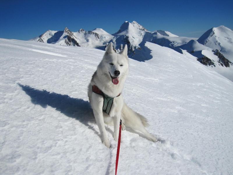 Saskia est montée à 4159m d'altitude! 2512
